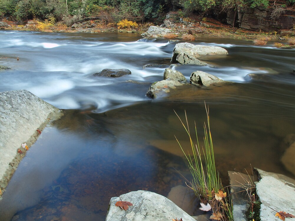 Linville River II by David Allen