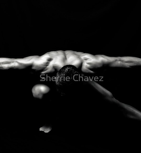 Flying Low by Sherrie Chavez