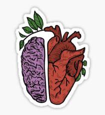 Pegatina Cabeza y corazon