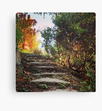 Steps in the Garden Canvas Print