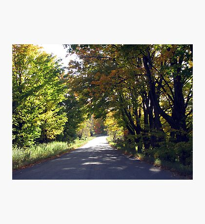 Country Drive In Trent Hills Photographic Print