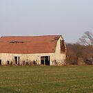 Broken Down Barn by Dave & Trena Puckett