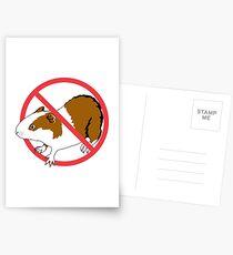 No Guinea Pig Postcards