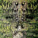 Nature's fractal 4: Northwest Bay Brook, NY by Doug Michael