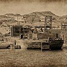 Wadi es-Sebua by Nigel Fletcher-Jones