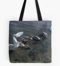Family Outing 01 Tote Bag