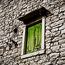 The Green Window by martinilogic