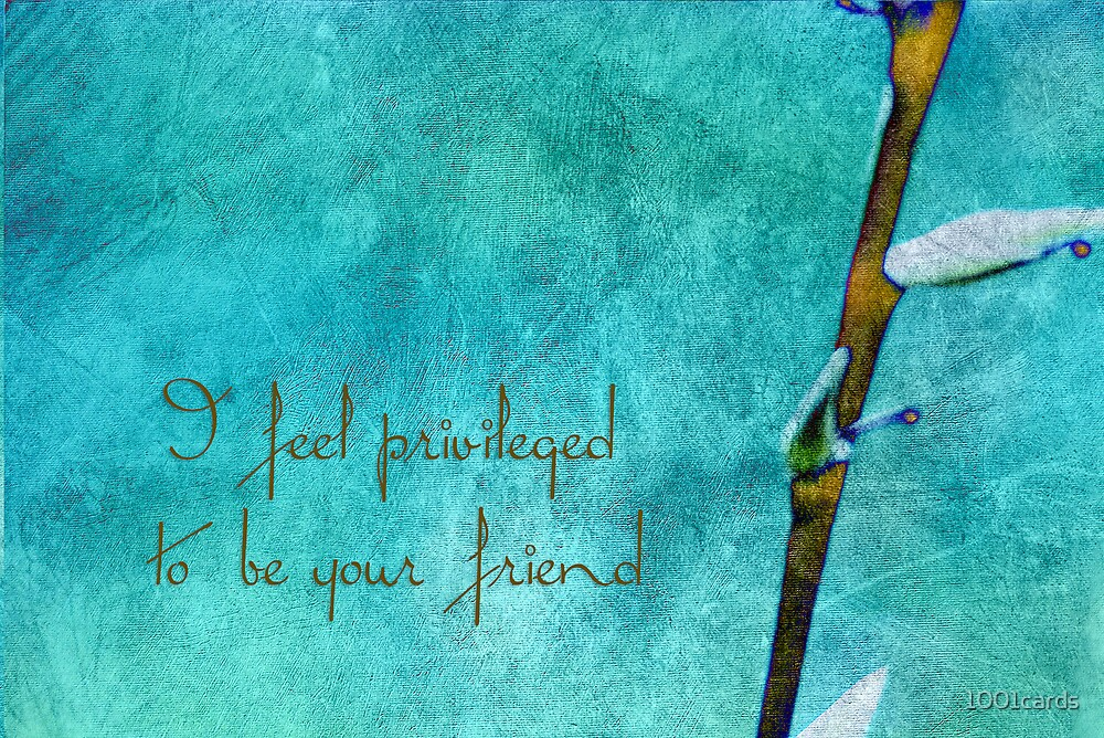 I feel privileged _ frienship card by 1001cards