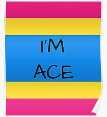 Panromantic Flag Asexuality I'm Ace Asexual T-Shirt Poster