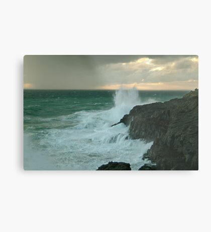 The Wild Side...Cape Bridgewater Metal Print