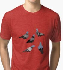Design 33 - The Pigeons Tri-blend T-Shirt