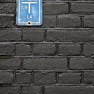 Blue on black by PeterBusser