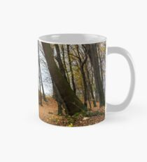 medieval fortress in autumn leafless forest Mug