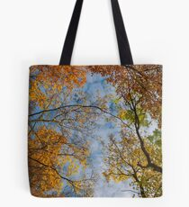 colorful foliage on a sky background Tote Bag