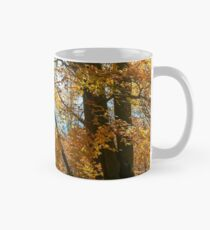 autumn spirits in the woods Classic Mug