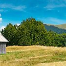 wooden hut on a grassy meadow by mike-pellinni