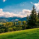 beautiful view in to the rural valley by mike-pellinni