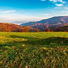 grassy meadow on hill side at sunrise in autumn by mike-pellinni