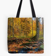 brook in autumn forest Tote Bag