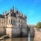 Château de Chenonceau by Michael Matthews