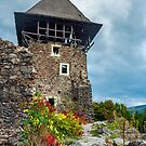 main tower of Nevytsky castle by mike-pellinni