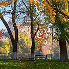 autumn park on Pravoslavna naberezhna by mike-pellinni