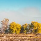 beautiful autumn landscape in the valley by mike-pellinni