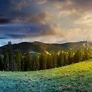 time change concept above alpine forest glade by mike-pellinni