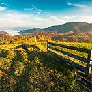 beautiful countryside at foggy autumn sunrise by mike-pellinni