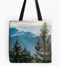 lovely november countryside background Tote Bag