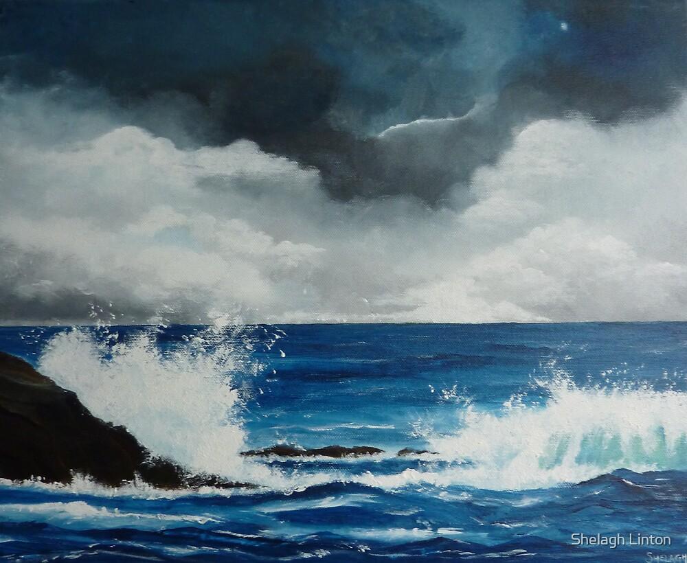 Storm by Shelagh Linton