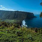 The majestic Big Island. by ROBERT NIEDERRITER