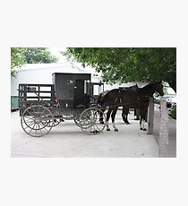 Amish Buggy #1 Photographic Print