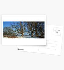 www.lizgarnett.com - Mersham le Hatch Deer Park  Postcards