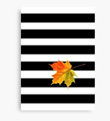 Fall - Autumn Leaf Canvas Print