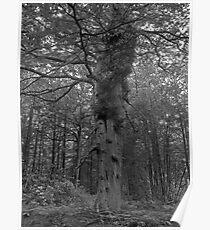 Eerie Chillingham Woods Poster