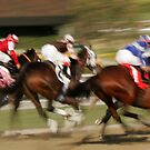 Field of Racing Thoroughbreds by caqphotography