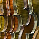 France - Paris 75019 - Luthier by Thierry Beauvir