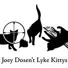 Joey Dosen't Lyke Kittys by Shawna Gregg
