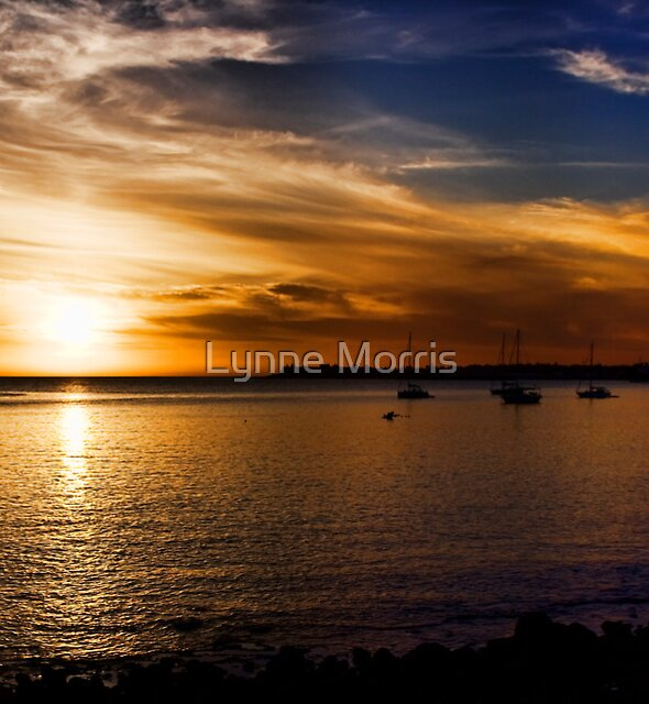 Golden Nights by Lynne Morris