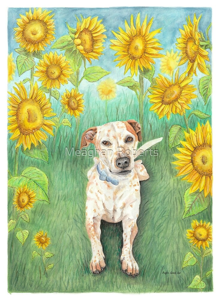 You are my Sunshine by Meaghan Roberts