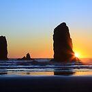 Canon Beach Needles by Anne McKinnell