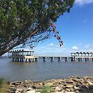Jekyll Island Fishing Pier by BeachBumFamily
