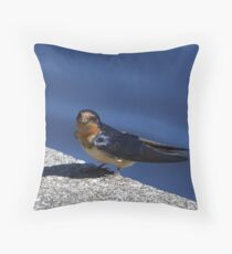Barn Swallow with some nest materials. Throw Pillow