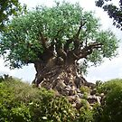 Tree of Life by Rikki Woods