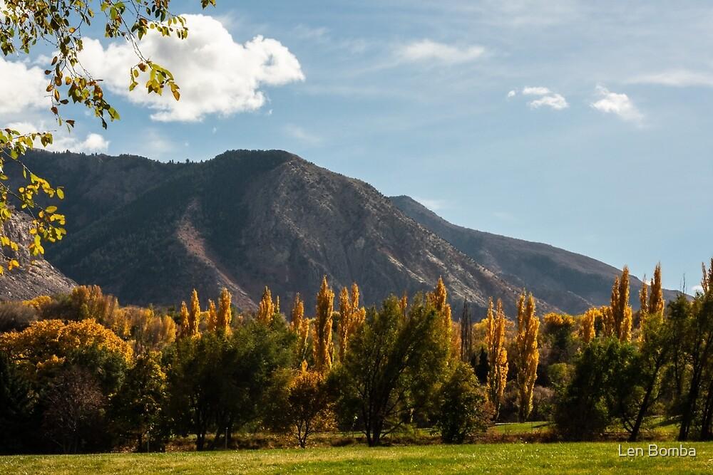 Fall Goldspires Adorning Ogden Park by Len Bomba