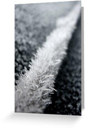 twice as nice as ice....  by Russ Styles