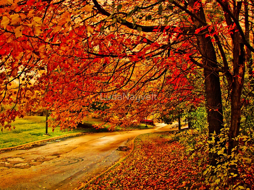 Autumn track by LudaNayvelt