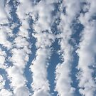 Lines of Clouds in a Blue Sky by Jon Shore