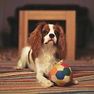 Play with me by Rodney Bantleman